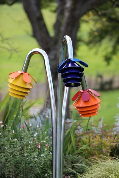Outdoor Gockenblume Harmony, 3-er Set Moll zum einbetonieren