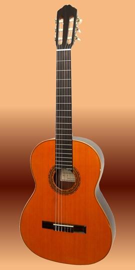 Valdez 4/4 Konzert-Gitarre