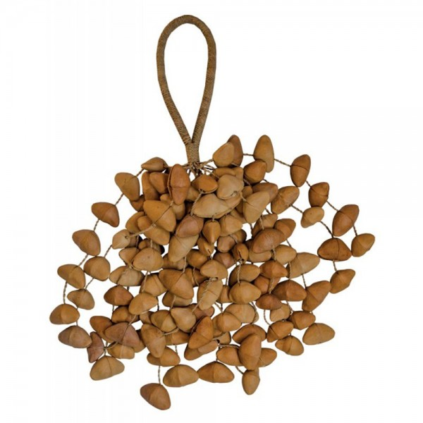 ChaCha-Nut Seed-Shaker